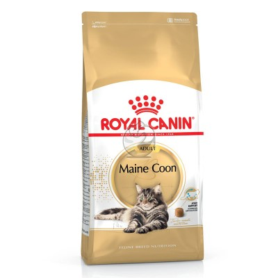 Royal Canin Seca Maine Coon Adulto