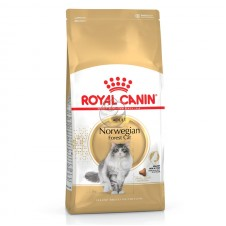 Royal Canin Seca Norweg Forest (Bosques da Noruega) Adulto